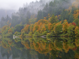 A Foggy Autumn Morning with View of the Umpqua River Near Scottsburg, Oregon. Photographic Print by Patricia Davidson
