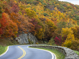 Autumn in the Shenandoah National Park, Virginia Photographic Print by Larry Patterson