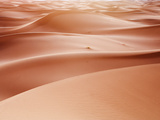 Sand Dune Ridges, Morocco Photographic Print by Ethan Welty