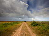 Mad Island Marsh Preserve, Texas: a Dirt Path Allows Vehicles to Travel Safely Throughout the Marsh Photographic Print by Ian Shive