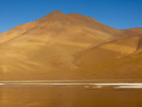 Morning Sunshine Reflects Golden Light Off Laguna Colorada Onto Photographic Print by Sergio Ballivian