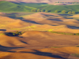 Morning View of Palouse Farmland from Steptoe Butte in Washington State. Photographic Print by Patricia Davidson