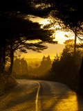 Sun Setting at End of Country Road Photographic Print by James Shive
