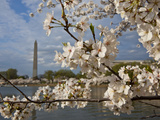 Washington, Dc Photographic Print by Karine Aigner