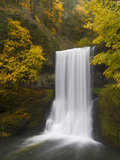 Fall Colored Leaves on Trees Surrounding Lower South Falls Within Silver Falls State Park, Oregon. Photographic Print by Patricia Davidson