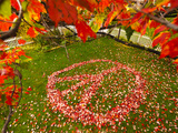 Fall Leaves in Shape of Peace Sign in Grass Photographic Print by James Shive