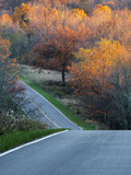 Immediate Needs- Autumn in the Shenandoah National Park Photographic Print by Larry Patterson