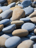 Olympic National Park, Wa: Blue and Brown Stones Found on Ruby Beach Photographic Print by Brad Beck