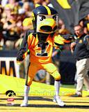 Herky the Hawk, the University of Iowa Hawkeyes Mascot Fotografía