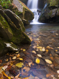 Grotto Galls, Smoky Mountain National Park, Tn Photographic Print by Brad Beck