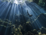 Woman Free Diving Between the Morning Sunrays at Cenote Cristalino, Quintana Roo. Mexico. Photographic Print by Christian Vizl