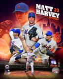 Matt Harvey 2013 Portrait Plus Photo