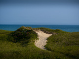 Sandy Path on Martha's Vineyard Beach. Photographic Print by James Shive