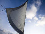 A White Sail Catching the Winds on Open Ocean across the Caribbean Sea. Photographic Print by Patrick Brooks Brandenburg