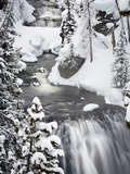 Kepler Cascades in Winter Photographic Print by Mike Cavaroc