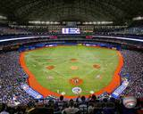 Rogers Centre 2013 Photo