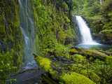 Columbia River Gorge National Scenic Area, Oregon Photographic Print by Ethan Welty