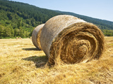 Hay Bales Photographic Print by Jaime Pharr