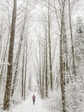 Winter Trail Running Photographic Print by Steven Gnam