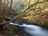 The Little River, Great Smoky Mountains National Park, Tn Photographic Print by Ian Shive