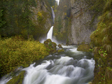 Wahclella Falls and Tanner Creek During Autumn, Within the Columbia River Gorge, Oregon. Photographic Print by Patricia Davidson