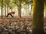 Lisa Eaton Takes Her Yoga Practice to a Rubber Tree Plantation in Chiang Dao, Thaialand Photographic Print by Dan Holz