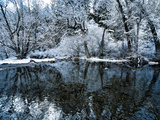 An Overnight Snow Storm Covers the Bank of the Boulder Creek Photographic Print by Brad Beck