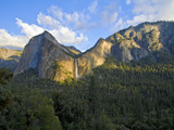 View of the Yosemite Valley and Bridalveil Falls. Photographic Print by Patricia Davidson
