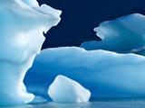 Icebergs Floating in Alsek Lake. Glacier Bay National Park, Ak. Photographic Print by Justin Bailie