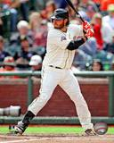 Brandon Crawford 2013 Action Photo