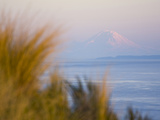 For Ebey State Park, Whidbey Island Photographic Print by Ethan Welty
