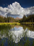 Yosemite National Park, California: Pond Along Entrance Gate at Tioga Pass and Tuolumne Meadows. Photographic Print by Ian Shive