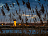 A Lighthouse and Reeds, Martha's Vineyard, Massachusettes. Photographic Print by James Shive