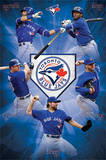 Toronto Blue Jays Team Baseball Poster Print