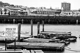 Pier 39, Fisherman's Wharf, San Francisco Fotografie-Druck von Philippe Hugonnard