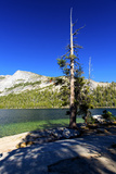 Gaylor Lakes - Yosemite National Park - Californie - United States Photographic Print by Philippe Hugonnard