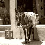 Village Berbères Du Haut Atlas Proche De Marrakech Au Maroc Reproduction photographique par Philippe Hugonnard