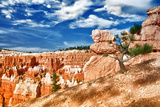 Bryce Amphitheater - Utah - Bryce Canyon National Park - United States Photographic Print by Philippe Hugonnard