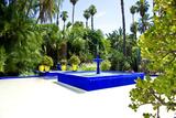 Fuente cuadrada azul en jardín Majorelle, Marrakech Lámina fotográfica por Philippe Hugonnard