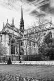 A nun - Notre Dame Cathedral - Paris - France Photographic Print by Philippe Hugonnard