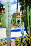 Vista de fuente en jardín Majorelle, Marrakech Lámina fotográfica por Philippe Hugonnard