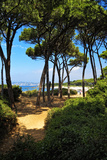 Ile Sainte Marguerite - Cannes - France Photographic Print by Philippe Hugonnard