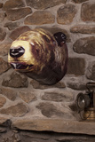 Inflatable Bear Head Wall Art Novelty
