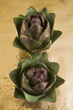 Two Artichokes, Cuisine Photographic Print by Nico Tondini