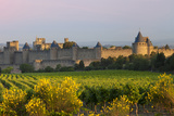 Dawn, Fortification, La Cite Carcassonne, Languedoc-Roussillon, France Photographic Print by Brian Jannsen