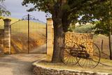Dawn at Gated Entrance to Farm Near Greoux-Les-Bains, Provence, France Reproduction photographique par Brian Jannsen