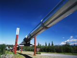 Trans Alaska Crude Oil Pipeline and Distant Mt Wrangell, Alaska, USA Photographic Print by Adam Jones