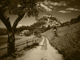 View of Dirt Road Through Field, Reutte, Tyrol, Austria Photographic Print by Stuart Westmorland