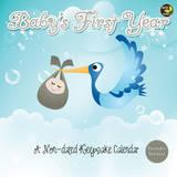 Baby's First Year - Non-Dated Keepsake Calendar Calendars