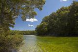 Mararoa River, Below South Mavora Lake, Southland, South Island, New Zealand Photographic Print by David Wall